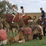 Oplevelser i Marrakech