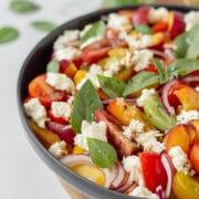 Sommer salat Tomatsalat med nektariner